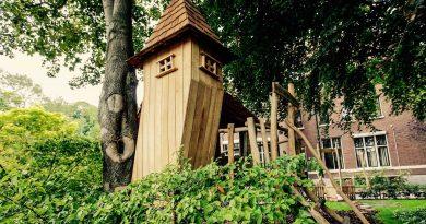 Een boomhut in de tuin is voor kinderen een fortuin!