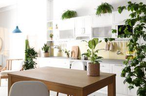 botanische keuken