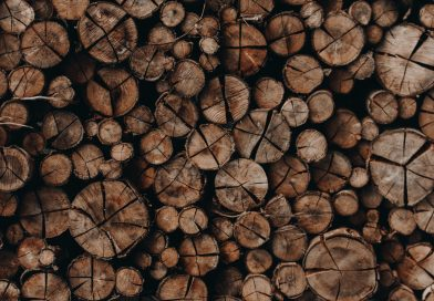 Hoe je de beste houtblokken voor je open haard kiest